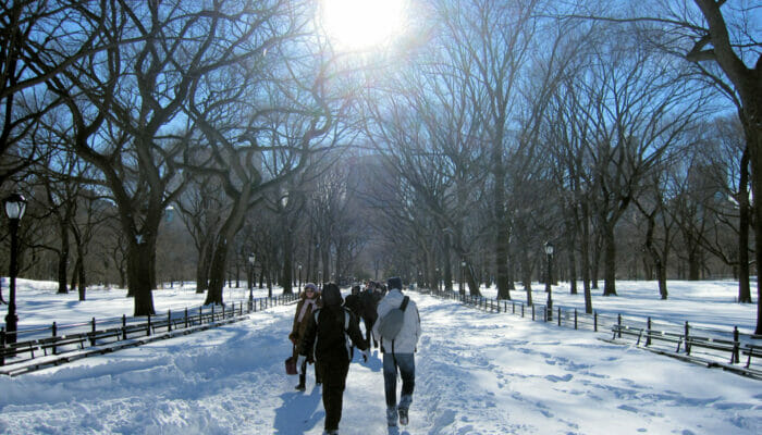 Weather in New York Winter