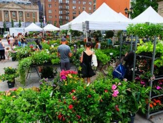 New York Markets - Plants on Union Square