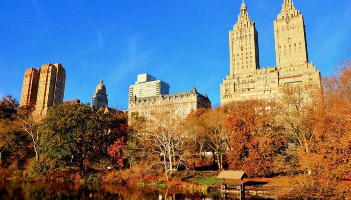 Central Park - Autumn