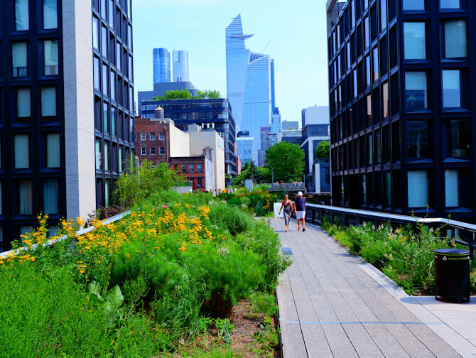 Parks in New York - Summer in High Line Park