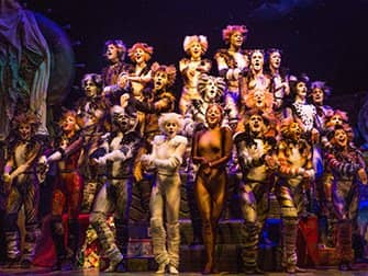 Cats on Broadway Tickets - Ensemble