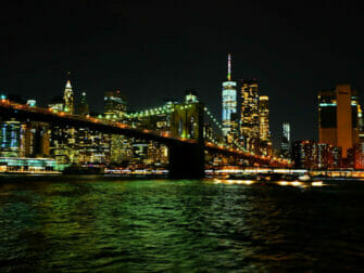 Hudson River Dinner Cruise in New York - Skyline View