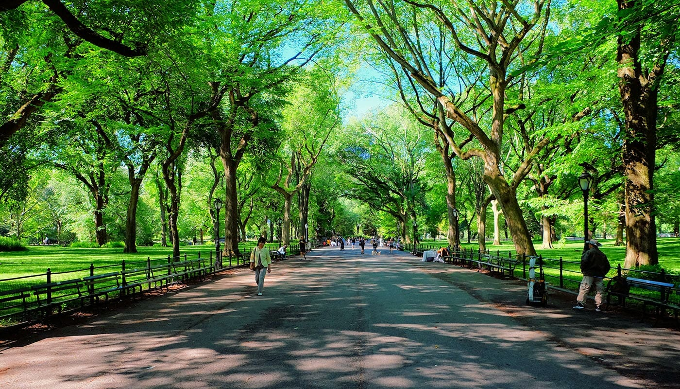 Mothers Day in New York - The Mall at Central Park