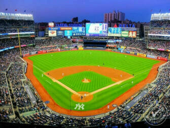 The Bronx New York Yankees eric