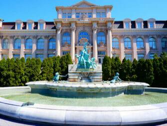 Botanical Gardens in New York New York Botanical Garden The Bronx
