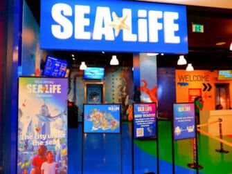 American Dream Mall near New York - SEA LIFE Aquarium